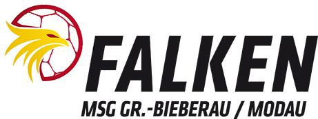 Logo-Falken-web